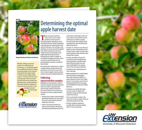 Determining the Optimal Apple Harvest date
